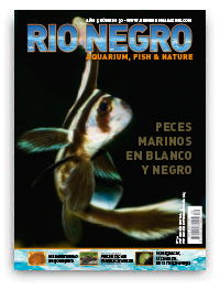 Revista Rio Negro 30