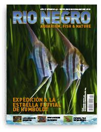 Revista Rio Negro 42