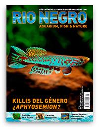 Revista Rio Negro 35