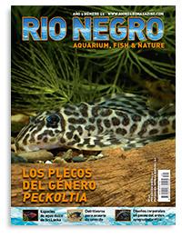 Revista Rio Negro 49